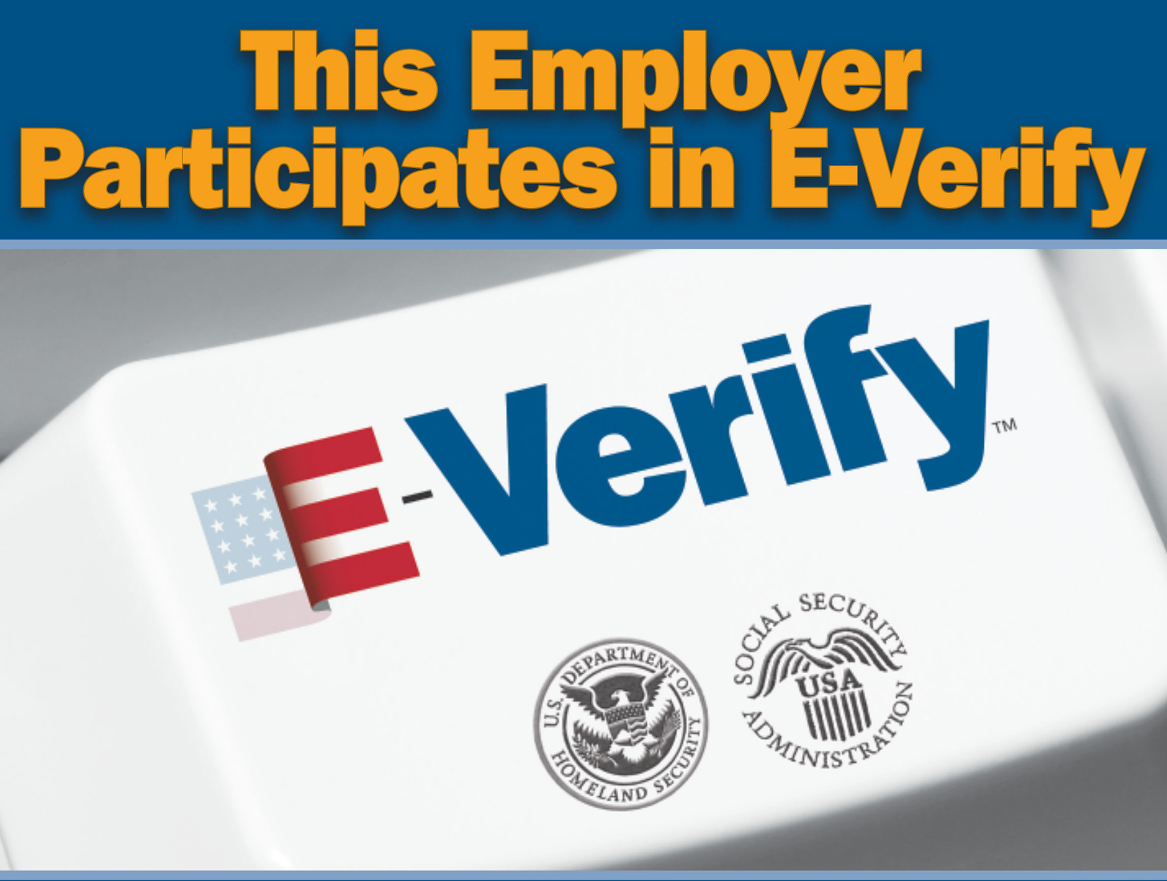 E Verify English
